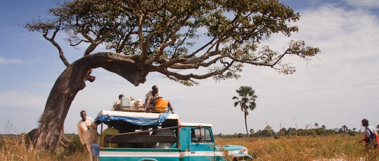 Diembéring au Sénégal. Crédit Angel Hernansaéz.
