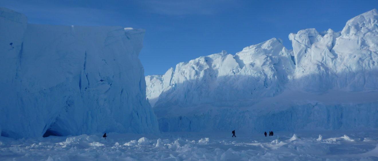 Banquise en Antarctique. Crédit Dominique Génin.
